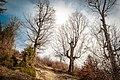 Untitled1 - panoramio (306).jpg