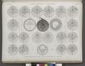 Vases, meubles et instrumens. 1-9. Astrolabe coufique en cuivre; 10-27. Plaques enfermés dans l'astrolabe (NYPL b14212718-1268867).tiff