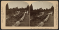 Vassar College grounds, Poughkeepsie, N.Y, by Littleton View Co. 2.png
