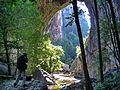 Veliki prerast - natural stone bridge - panoramio.jpg
