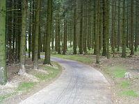 Vennbahnweg-detour-wilwerdange-06.JPG