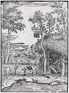 Giovanni Maria Verdizotti