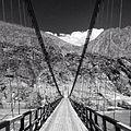View from a Suspension Bridge.jpg