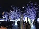 View in front of Hakata Entrance of Hakata Station at night 20181223-2.jpg