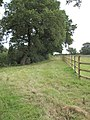 View of Footpath to Wervin Road - geograph.org.uk - 1433614.jpg