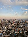 View of Tokyo Tower from Mori Art Museum Mori Tower.jpg