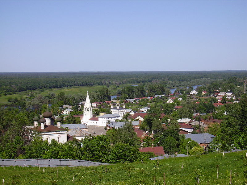 Payl:View on Gorokhovets town.JPG