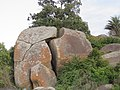 Views at Chandragiri hills, Shravanabelagola (65).jpg