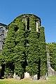 Villers Abbey.jpg