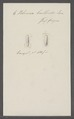 Volvaria bulloides - - Print - Iconographia Zoologica - Special Collections University of Amsterdam - UBAINV0274 087 05 0004.tif