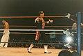 WWE - Birmingham 210695 (24).jpeg