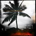 Waikīkī, Honolulu, HI 96815, USA - panoramio (51).jpg