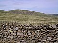 Wall, Dryhowe Pasture - geograph.org.uk - 441261.jpg