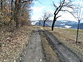 Wanderweg-Maxen.JPG