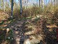 Wanderweg - panoramio (115).jpg