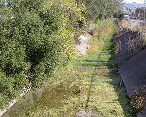 Washington Creek - channelized section in dry season