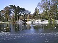 West Park Lake - geograph.org.uk - 373162.jpg