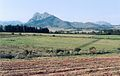 Western Cape 1991.jpg