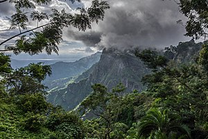 Tanga Region - Western Usambara Mountains