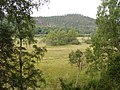 Wetland, Inshriach - geograph.org.uk - 237893.jpg
