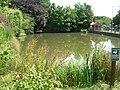 Wetwang Duck Pond - geograph.org.uk - 1395845.jpg