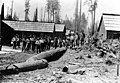 Weyerhaeuser Timber Co Camp 2, Walsh Lake, Washington, June 15, 1904 (INDOCC 561).jpg