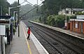 Where is my train^ The 'lady in red' at Welwyn. - panoramio.jpg