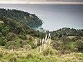 White Island New Zealand-7200039.jpg