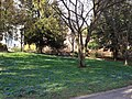 Wiesbaden, Germany - panoramio (22).jpg
