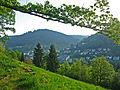 Wildbad-Panorama-3.jpg
