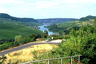 upper part of the Moselle river in Germany