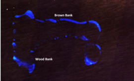 Wood Bank and Brown Bank.png