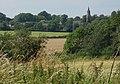 Woodland Edge - geograph.org.uk - 527907.jpg