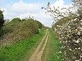 Worstead Street - geograph.org.uk - 770447.jpg