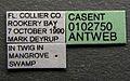 Xenomyrmex floridanus casent0102750 label 1.jpg
