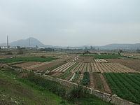 Xiang'an - S201 - fields - DSCF9152.JPG