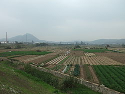 Rural landscape in Xiang'an District