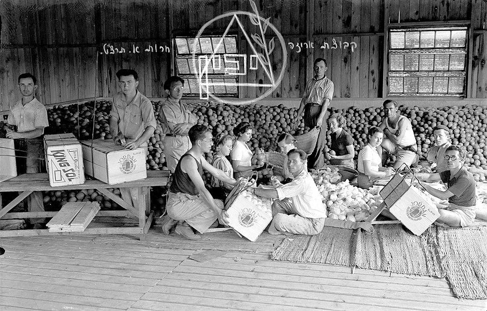"""""""קבוצת אריזה"""" של יכין בכפר סבא, 1939"""