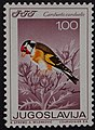 Yugoslavian stamp with Carduelis carduelis 1968.jpg