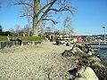 Zürichhorn 2012-03-20 15-53-28 (P7000).JPG