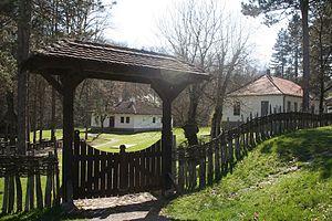 Desanka Maksimović - Maksimović spent much of her childhood in Brankovina