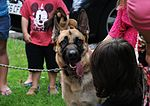 'Paws to Read' at library 140813-F-FE537-028.jpg