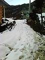 (جونم برف(ماهيان - panoramio.jpg