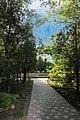 Ботанічний сад імені академіка Олександра Фоміна 25.JPG