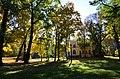 Вікові дерева колишньої садиби Г. М. Глібова 01.jpg