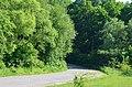 Дорога посеред лісового заказника Осташки.jpg