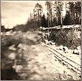 Лоймола - Райконкоски. Июнь 1920 год, Sirelius U. T.jpg