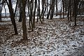 Мікрорайон Гречани, Хмельницький, Хмельницька область, Ukraine - panoramio (33).jpg