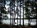 Озеро Ведето. - panoramio.jpg