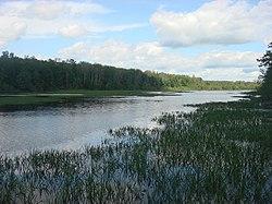 Озеро близ о.п. Кумашка, Кумашкинский заказник.JPG